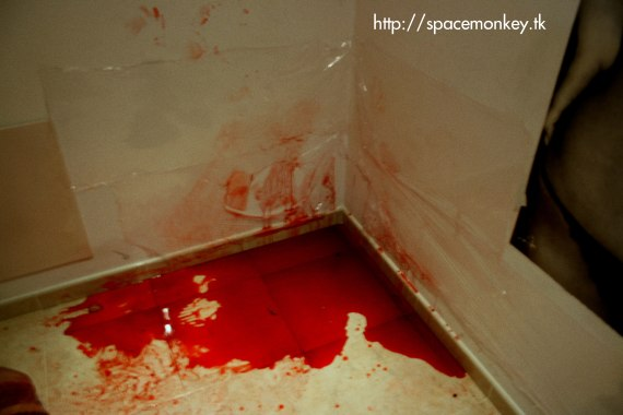 20080526212027-blood.jpg
