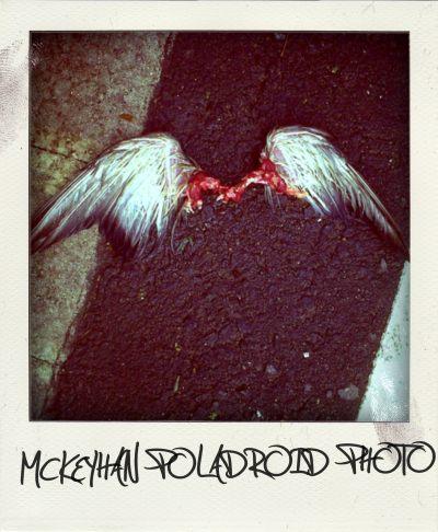 20110509121436-mckeyhan-poladroid-5.jpg