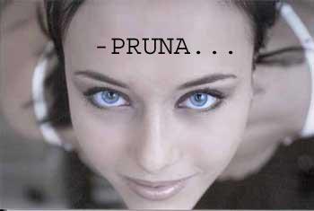 Blue-eyes01.jpg