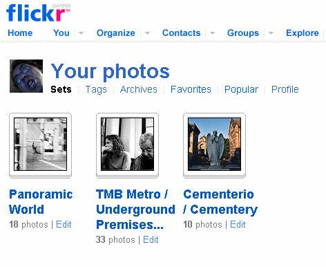 20060806210900-flickr.jpg