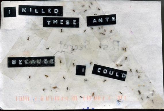20070614153652-ants.jpg